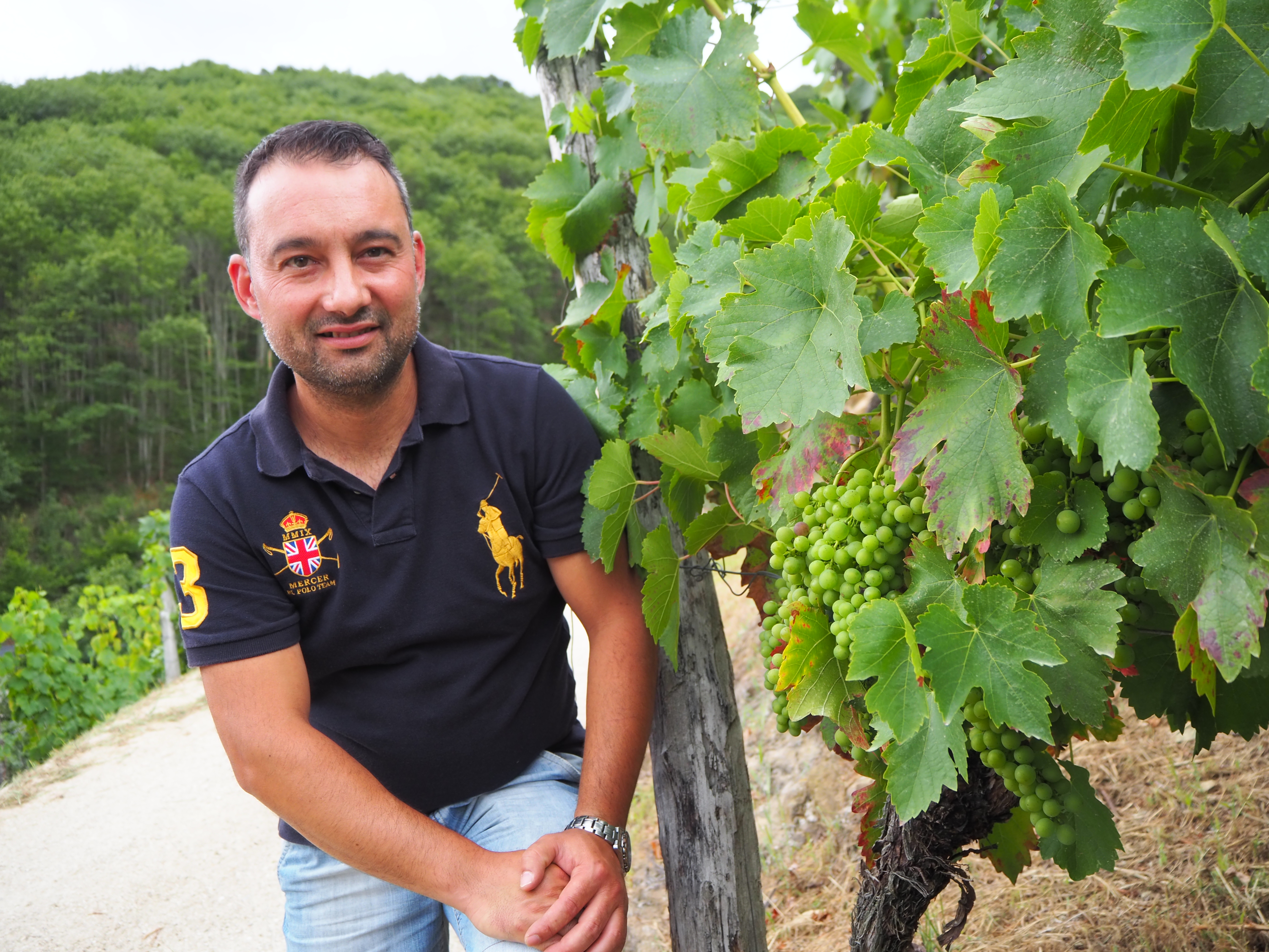 Relevo al frente de la DOP Vino de Cangas