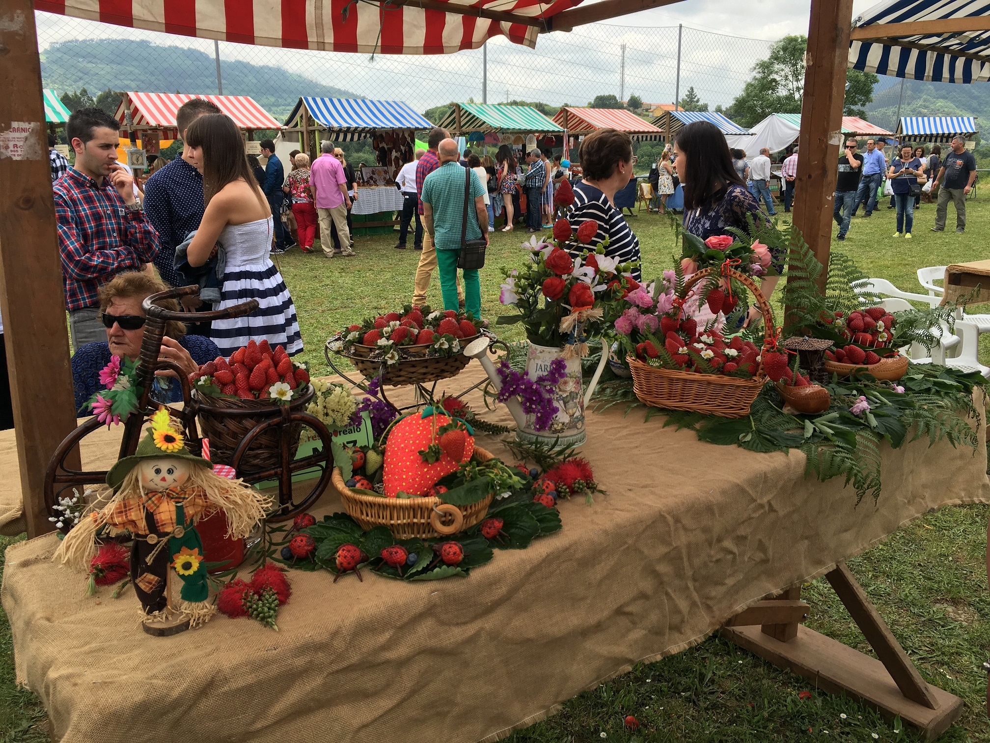 Candamo se prepara para su tradicional festival de la fresa